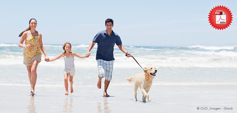 Urlaub mit Haustieren